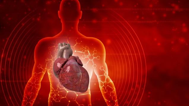 Das PEI hat bislang 90 Meldungen zu Herzmuskelentzündungen nach COVID-19-Impfungen erhalten, noch erkennt das Paul-Ehrlich-Institut kein Risikosignal. (Foto: jijomathai / AdobeStock)