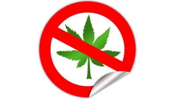 Kein kontrolliertes Cannabis für Kreuzberg