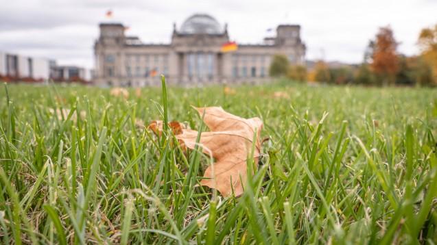 Schon wieder Herbst: Das VOASG hat einen Weg voller Hindernisse hinter sich. Und voraussichtlich liegen noch weitere vor ihm. (c / Foto: imago images / Stefan Zeitz)