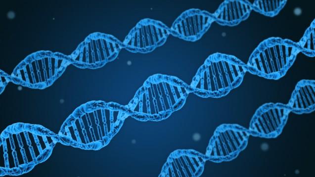 Welches Risiko steckt in den Genen? Ein Test soll Antworten geben. (Foto:Dan Race / Fotolia)