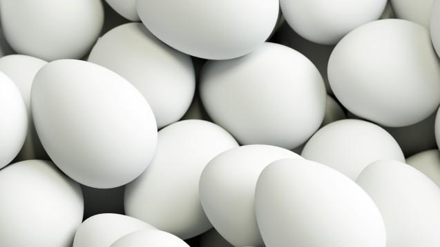 Hochdosierter Grippeimpfstoff bedeutet: Er enthält jeweils die vierfache Menge an Antigen – pro Impfstamm je 60 µg statt 15 µg wie in standarddosierten Grippeimpfstoffen. Und diese Eier wollen gelegt sein. (Foto:Robert Kneschke / stock.adobe.com)