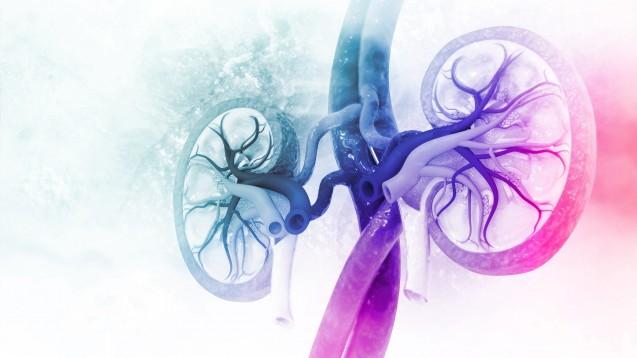 Der PRAC untersucht, ob Remdesivir möglicherweise die Nieren akut schädigt. Veklury ist das bislang erste und einzige Arzneimittel, das bei COVID-19 die Zulassung erhielt. (s / Foto:Crystal light / stock.adobe.com)