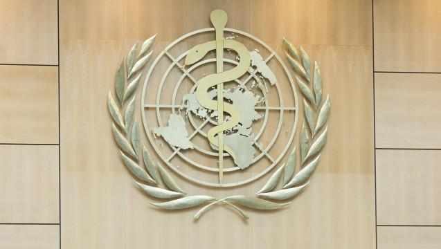 Die Weltgesundheitsorganisation warnt: Millionen Todesfälle bei Kindern wären mit wenig Aufwand vermeidbar. (Foto:V. Martin / WHO)