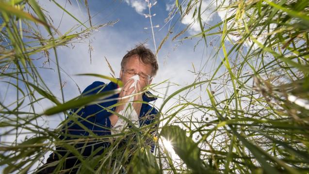 Nach der Allergiesaison ist vor der Allergiesaison. (Foto: henrik_a / stock.adobe.com)
