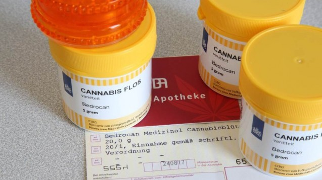 Auf medizinischen Cannabinoiden, einschließlich Medizinalcannabis ruhen große Hoffnungen. auchbei verschiedenen psychischen Störungen.(Foto: imago images / epd)