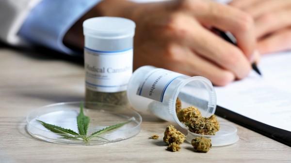 FDP will Cannabis neu klassifizieren