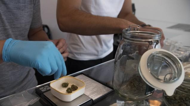 Cannabis zur Freizeitanwendung in kontrollierter Produktqualität – damit wollen FDP, Grüne und Linke den Schwarzmarkt zurückdrängen. (Foto: Imago)