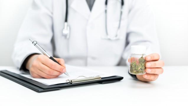 Medizinisches Cannabis: Die meisten Verordner sind Hausärzte, Schmerzmediziner und Neurologen. (Foto: MKS / stock.adobe.com)