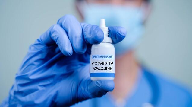 Die Entwicklung einer nasalen Vakzine wird auch dadurch erschwert, dass erst ein effizientes Freigabesystem für das Antigen entwickelt werden und das geeignete Adjuvans gefunden werden muss. (c / Foto: WESTOCK / AdobeStock)