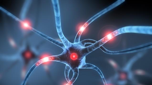 Was ist dafür verantwortlich, dass Neuronen untergehen? Die Frage widmet sich ein EU-finanziertes Projekt. (Foto:psdesign1 / Fotolia)