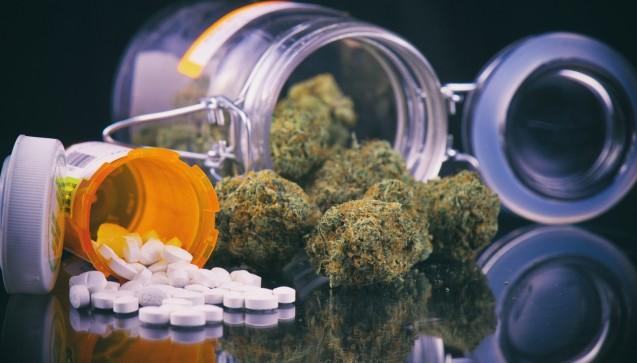 """Das """"Cannabis-Gesetz"""" ist am Freitag in Kraft getreten. Jetzt kann es sein, dass ein Patient mit einem Rezept über Cannabis-Blüten zu Ihnen in die Apotheke kommt. Sie haben noch immer keine Zeit gefunden, sich näher mit dem Thema zu beschäftigen? Keine Panik! Hier gibt es die Erste Hilfe im Schnelldurchlauf. (Foto: rgbspace / fotolia)"""