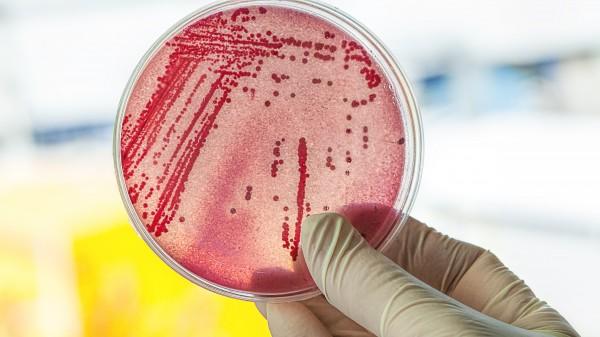 Ambulante Antibiotikaverordnungen steigen nicht