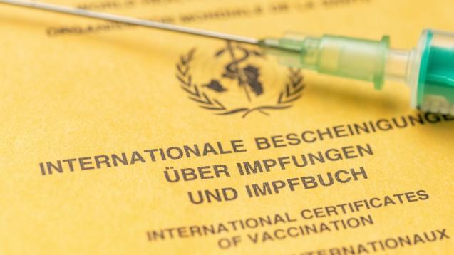 Bald soll die Suche nach dem Impfbuch beendet sein: Es wird künftig auf der elektronischen Patientenakte zu finden sein. (Foto: Zerbor / stock.adobe.com)