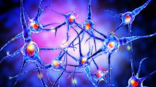 Zugelassen und in die Therapieempfehlung implementiert: Cladribin in Mavenclad bei hochaktiver MS. (Foto: ralwel / stock.adobe.com)