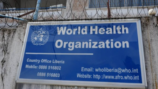 WHO bedauert Versagen bei Ebola