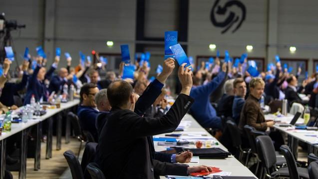 Die AfD hat einen Leitantrag beschlossen, in dem sich die Partei für das Rx-Versandverbot starkmacht und fordert, dass die Gesundheitspolitik der Nationalstaaten Vorrang haben muss vor der EU-Wirtschaftspolitik. (c / Foto: dpa)