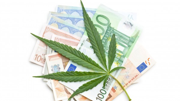 "Vorerst kein Export von ""Cannabis made in Germany"""