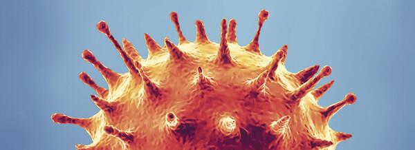 COVID-19-Schnelltests unter der Lupe