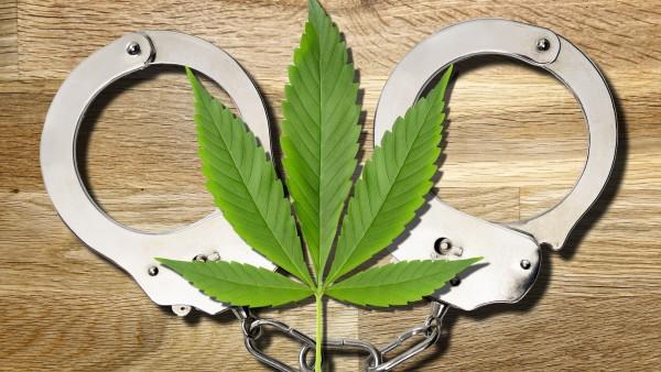 Cannabis legalisieren – ja oder nein?