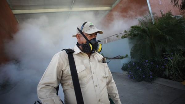 Virologe:Gefahr durch Zika-Virus in Deutschland sehr gering