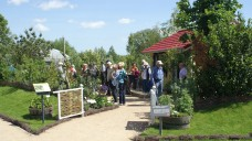 """Der Apothekergarten """"Hexenkessel"""" bei der Internationalen Gartenschau 2013 in Hamburg-Wilhelmsburg (Foto: Müller-Bohn)."""