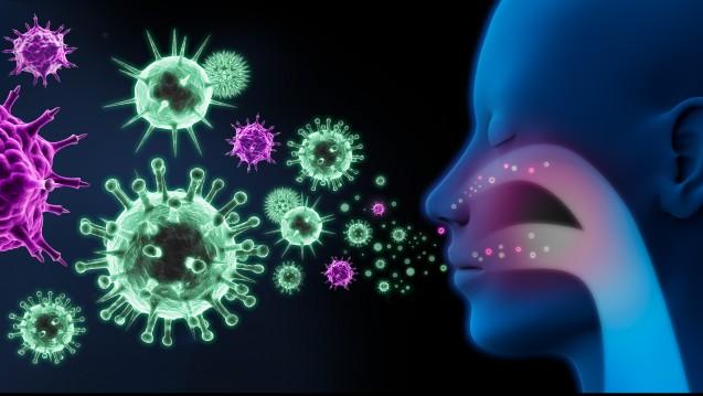 Die Epithelzellen der                 Atemwege sind die Wirtszellen der Influenzaviren. Hier setzt Atriva an. (c / Foto: peterschreiber.media /stock.adobe.com)