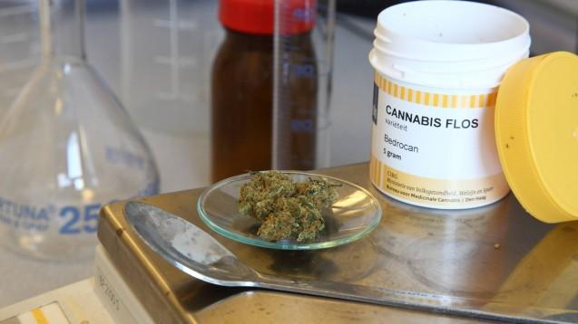 Der Deutsche Apothekerverband und der GKV-Spitzenverband haben sich auf neue Regel zur Taxierung von Cannabisprodukten geeinigt. (Foto: imago images / epd)