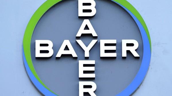Wie gut klappt Ihre Zusammenarbeit mit Bayer?
