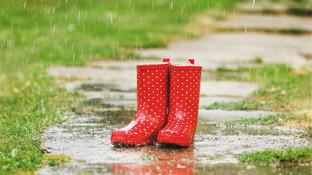 Vom Regen in die Traufe