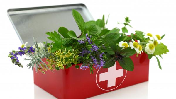 BfR warnt vor Pyrrolizidinalkaloid-haltigen Nahrungsergänzungsmitteln