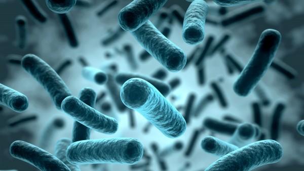 """Kampf gegen """"superbugs"""""""