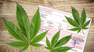 Zahl der Cannabis-Rezepte in Apotheken steigt weiter an