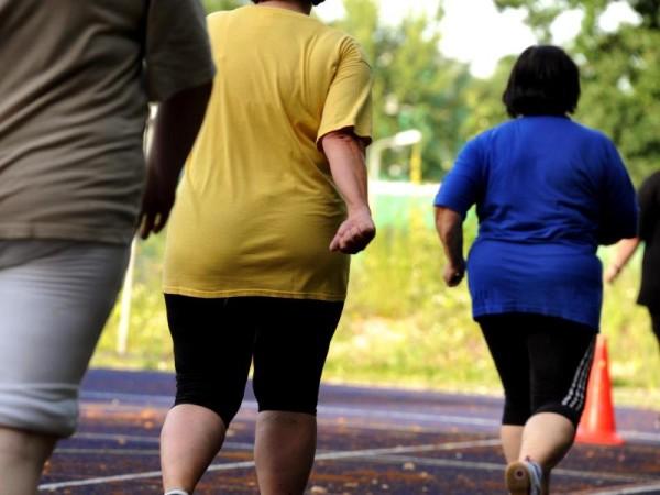 EU-Statistik: Jeder sechste Erwachsene ist fettleibig