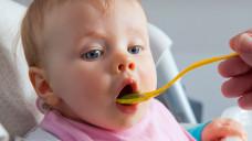 Gefährlicher Spinatbrei? Bei dem Nitrat-reichen Gemüse kann durch Bakterien Nitrit entstehen. In der Schweiz führte dies zu Methämoglobinämie bei Kleinkindern. (Foto:Ramona Heim / Fotolia)