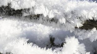 Kristallwachstum als ein (un-)vermeidbares Übel?