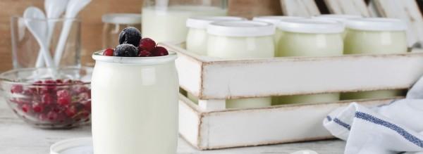 Probiotika zum Abnehmen?
