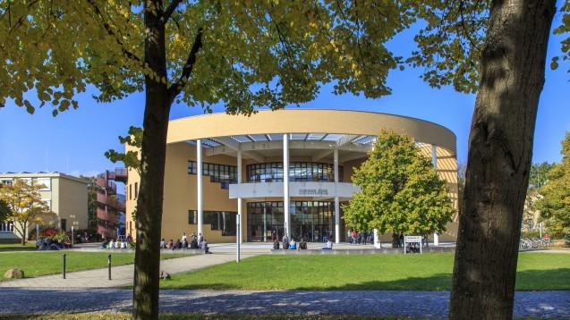 Wird es an der BTU Cottbus-Senftenberg (hier der Standort Senftenberg) einen Studiengang Pharmazie geben? (m / Foto: imago)