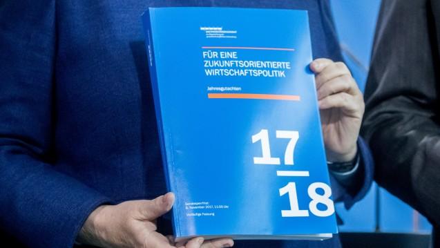 Die Wirtschaftsweisen haben am heutigen Mittwoch ihr Jahresgutachten an die Kanzlerin überreicht. (Foto:dpa)