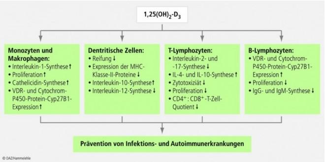 vitamin-d-03.eps