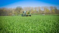 Pflanzenschutzmittel gehören in sachkundige Hände. (Foto: countrypixel/Fotolia)