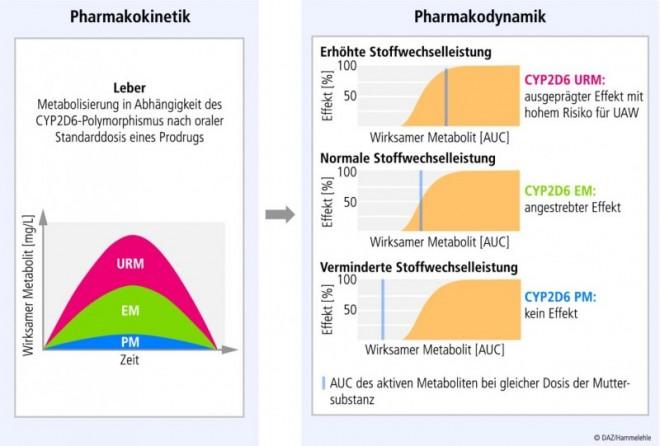 18_du_pharmakogenetik_01.eps