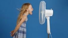 Warum kann der Wind Musik davontragen? (Foto: mariesacha / stock.adobe.com)