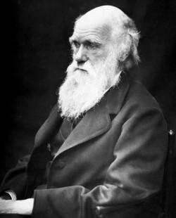 D5108_Charles_Darwin.jpg