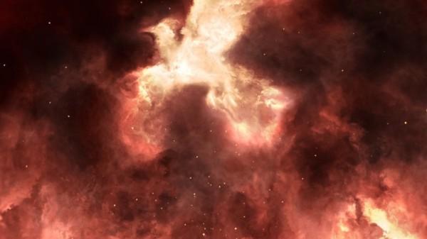 Wie Phoenix aus der Asche