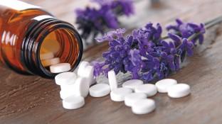 EbM in der Phytotherapie