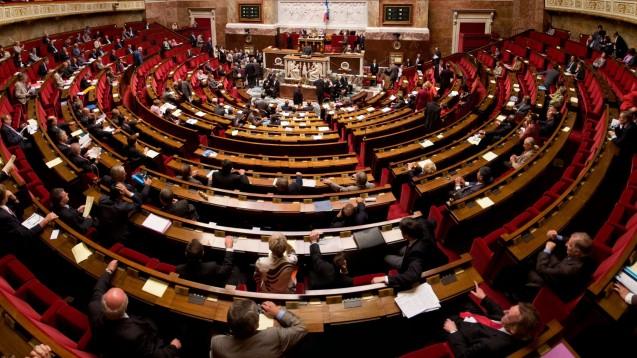 Das französische Parlament will zunächst zehn Millionen Euro zur Verfügung stellen. (Foto:Richard Ying et Tangui Morlier / Wikimedia, CC BY-SA 3.0)
