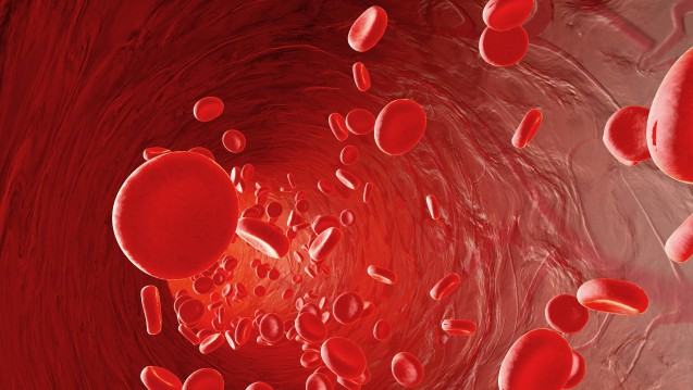 Den NOAK ist gemeinsam, dass sie das Gerinnungssystem unabhängig von der Vitamin-K-Synthese beeinflussen. Über einen Kamm scheren lassen sich die direkten Antikoagulanzien jedoch nicht. (Foto: Imago)