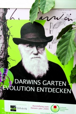D2509_darwin_poster.jpg