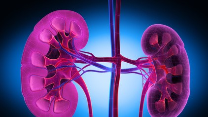 Metformin jetzt auch bei schlechterer Nierenfunktion