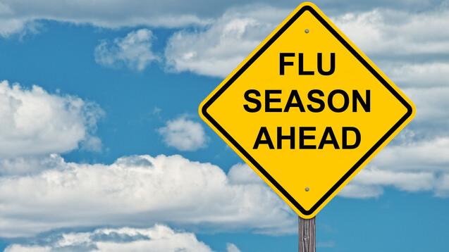 Es geht los: Das Paul-Ehrlich-Institut hat die ersten Grippeimpfstoffe freigegeben. (Foto:Jim Vallee / AdobeStock)